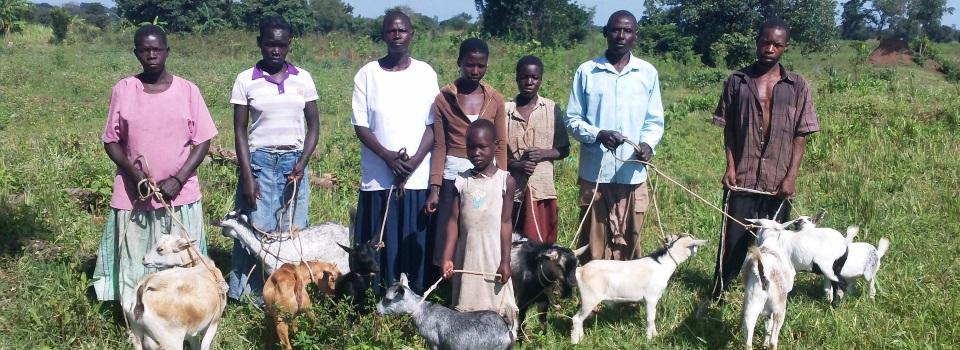 pic-goat